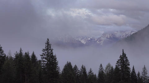 Mountain alps landscape with trees in fog clouds Footage