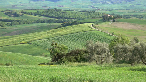 Tuscany panorama farmland hill fields in Italy Footage