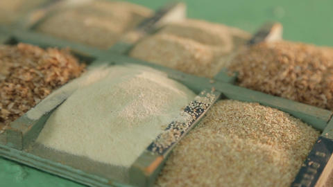 Samples of ground grain at a flour mill Footage