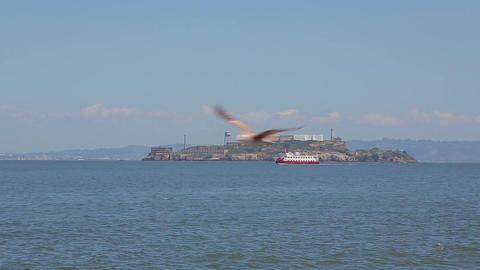 Tourist boat sails near the island of Alcatraz Footage