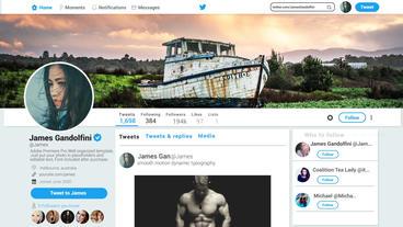 Twitter Promo V1 0 Premiere Pro Template