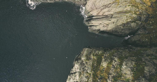 Epic aerial view of coastal landscape in Norway Lofoten - birds fly Live Action