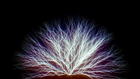 Tree form lighting type4 Animation