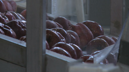 Close Up Of Apple Fruit Production Line In Food Factory Pan stock footage