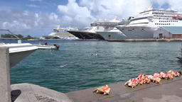 Bahamas Nassau bows of cruise ships seen from the waterfront promenade Footage