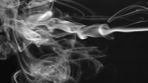 Single white smoke on a black background. Beautifully Footage