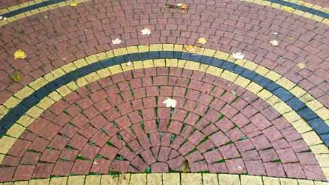 beautiful path of tiles in an autumn park. Can be used as a back Foto