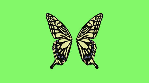 Butterfly wings 1 Animation
