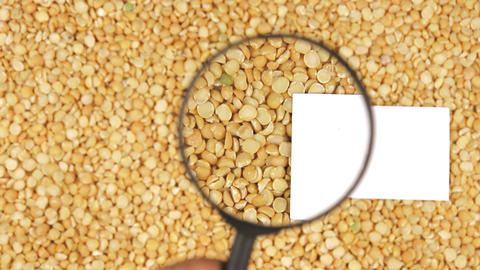 Magnifying glass increases the peas grains and business card Footage