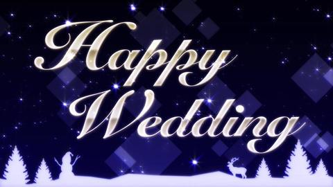 Happy Wedding Stock Video Footage