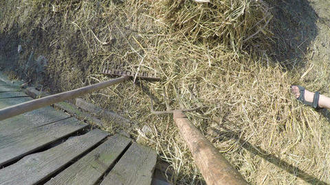 Point of view of man with hay fork shoveling hay in a barn at the country side Footage