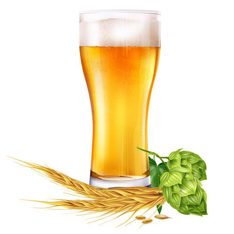 Glass of beer and hops on white background Fotografía