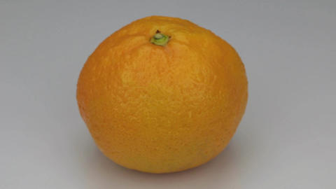 Orange mandarin spinning in drops of dew on a white background Footage