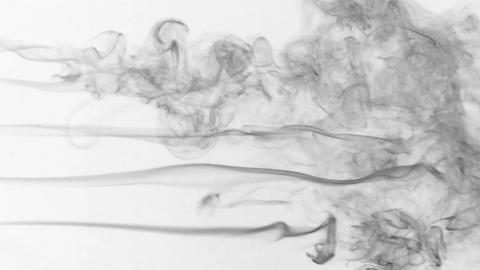 Five stream of black smoke turning into smoke puffs on a white background Footage