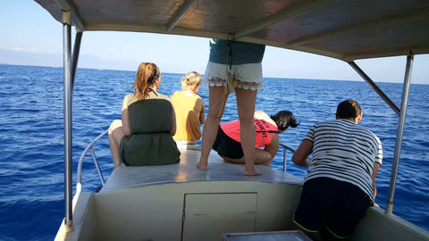 Tourists take photos from dolphins on boat at Lovina, Bali Footage