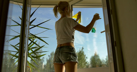 Window Washer 2