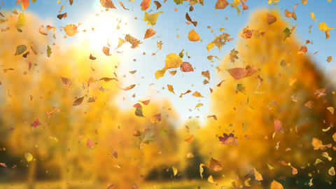 Autumn Fall Leaves Sideways - Realistic Falling Leaves Video Background Loop Animation