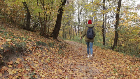 Trendy hipster girl walking the dog in autumn park 画像