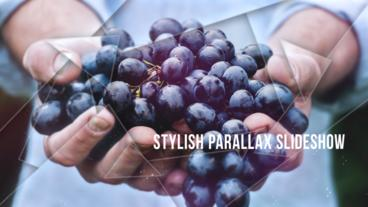 Stylish Parallax Slideshow After Effects Template