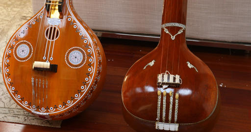Indian Music instrument Veena Stock Video Footage