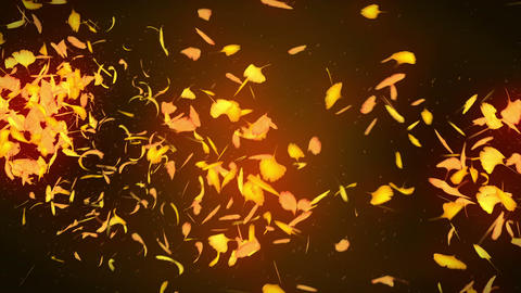 Autumn Leaves Falling on Yellow Background, Ginkgo Leaf, Loop Glitter Animation CG動画
