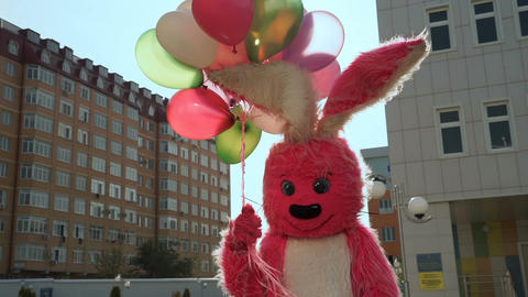 rabbit with baloons birthday Filmmaterial