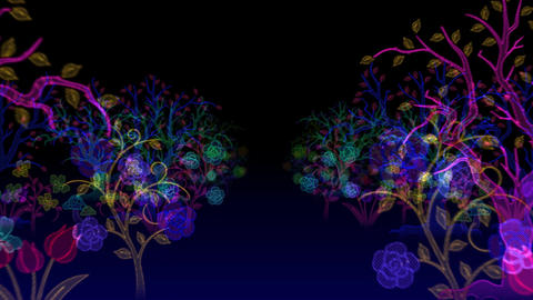 Illuminated Forest Animation