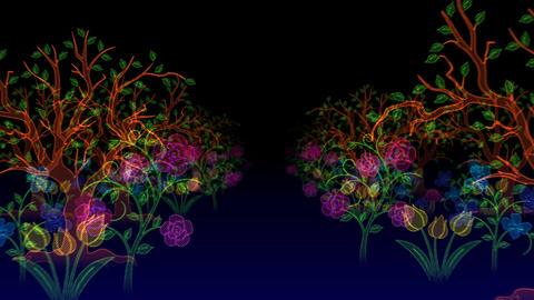 Illuminated Forest Stock Video Footage