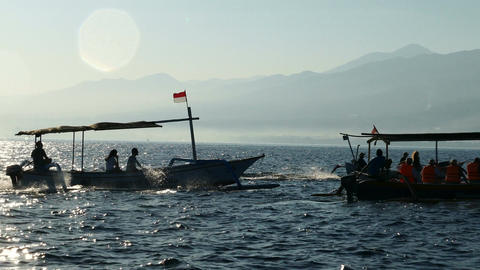 Traditional fishing boats on Bali Sea are waiting for dolphins Live Action