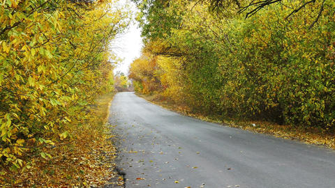 Bikers riding on the autumn road Image