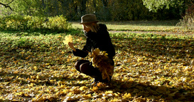 Woman collecting leaves in autumn park Footage