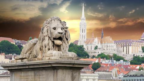 Chain Bridge Lion Sculpture, Budapest, timelapse, 4k Footage