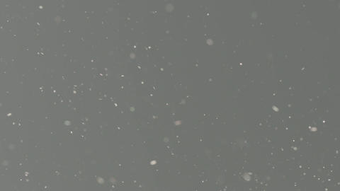 Grey Background with Glitter Live Action