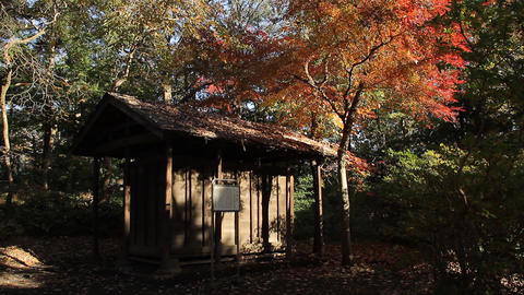 Japanese traditional warehouse in autumn / Hiegura - Fix Footage