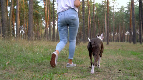Girl playing with her dog in the forest at sunset. Slow motion Live Action