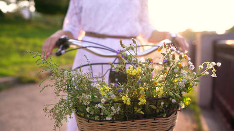 Basket with flowers close-up. Woman standing near her bicycle at sunset Live Action