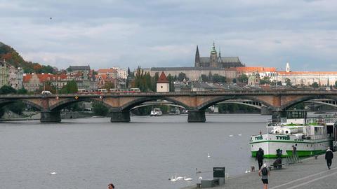 Prague, Czech Republic - OCTOBER, 2017: White Swans at bridge, Vltava river. old Live Action