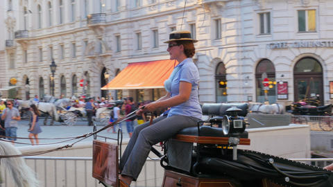 VIENNA - AUSTRIA, AUGUST 2015: hofburg palace street, horse carriage Footage