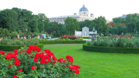 garden near hofburg imperial palace, vienna, austria Footage