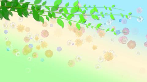 001 Falling Flowers Animation