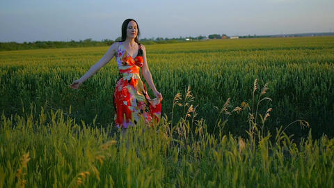 the girl walks across the field on a summer evening Footage