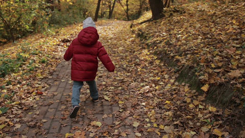 Little toddler boy running in colorful autumn park Footage