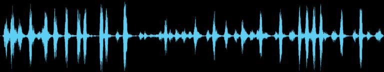 Dogs Sound