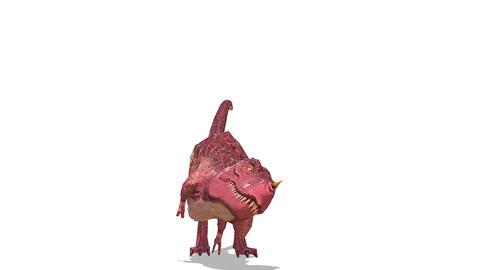 FHD-Dinosaur Animación