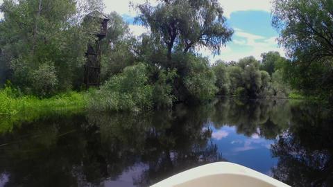 Danube Delta Live Action