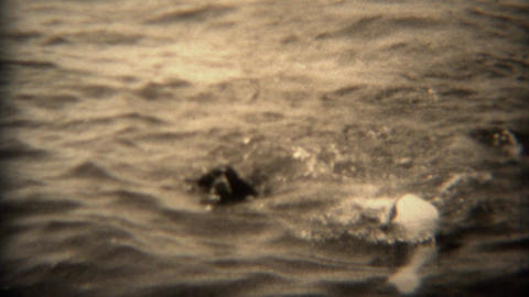 1936: Woman in swim cap and dog swimming together in open lake water Footage