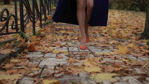 Autumn Fashion 0