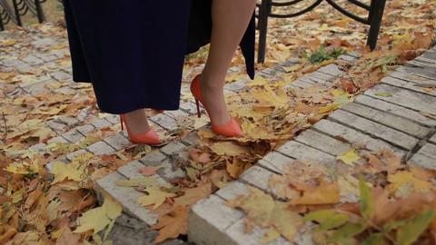 Elegant businesswoman climbing stairs in autumn Footage