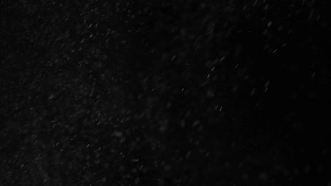 Snow falling on black background Live Action