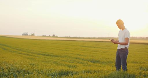 Agriculture - Medium Shoot of Farmer using digital tablet in field Footage